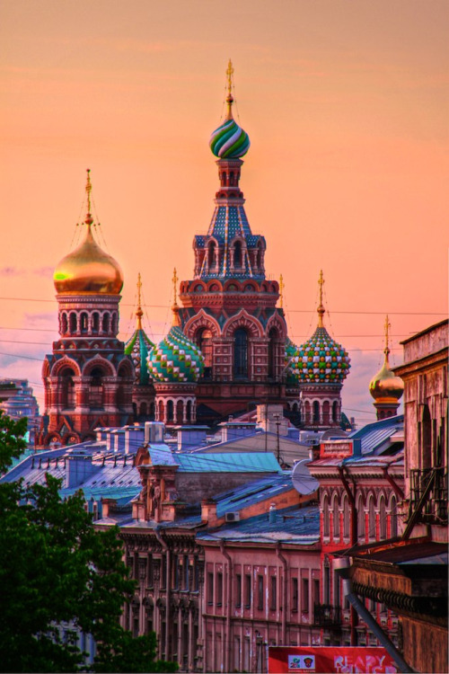 allthingseurope:  Church of Our Savior on The Spilled Blood, St. Petersburg, Russia (by Luís Henrique Boucault)