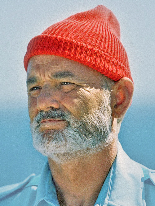 thegoodfilms:  Steve Zissou  See but now all I want to do is watch Wes Anderson movies all night. *Sigh*