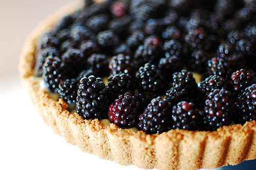 tart (by //secret pocket//)