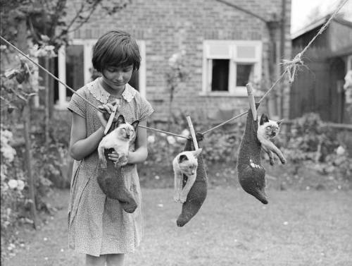 "what-floats-my-boat:  ""A little girl hangs three Siamese kittens on a washing line in a garden in Croydon, London. (Photo by Fox Photos/Getty Images). 14th July 1931""  wow what an old photo"