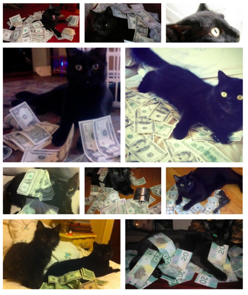 cashcats:  all black everything