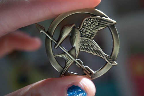 longxiong:  The Mocking Jay :) Somebody please find me this.