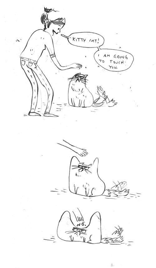 lol stubborn cats