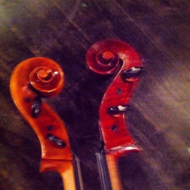 Cello love in the opera pit