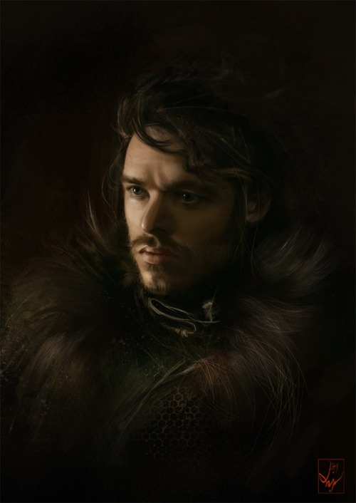 Game of Thrones Artwork by Aniaem