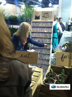 Friendly seed peeps at the Happy Cat display #pf3 event