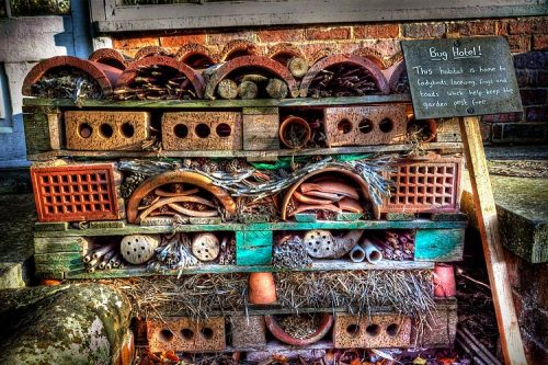"The Bug Hotel, Wightwick Manor, Wolverhampton, West Midlands: ""This habitat is home to ladybirds, lacewing, frogs, and toads which help keep the garden pest free."" Photo: Declan O'Doherty. This bug hotel was made from a pallet using found objects, including bricks, terra cotta, stones, hay, pine cones, blocks and branches. The items are carefully arranged in the pallet slots, filling the horizontal spaces tightly. The end result is a natural work of functional apartment-art for the bugs!"