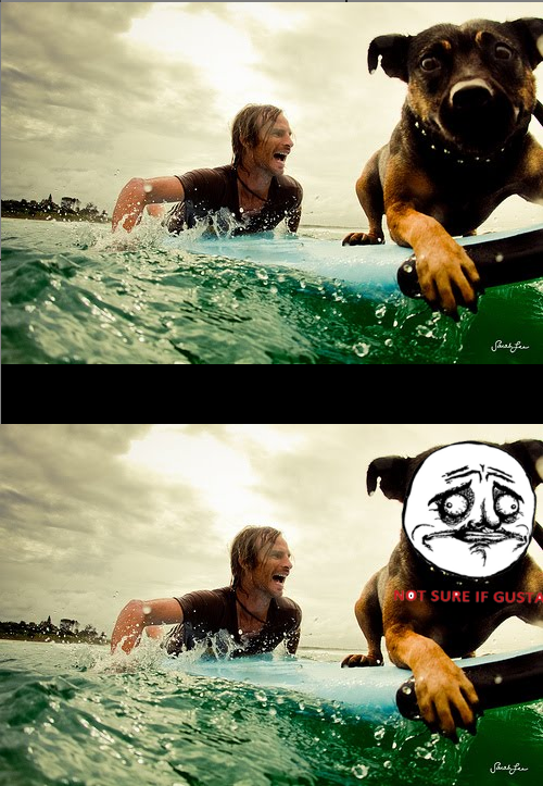 "thefuuuucomics:  ""Surfer Doggie Not Sure""  Submitted by quietstormz"