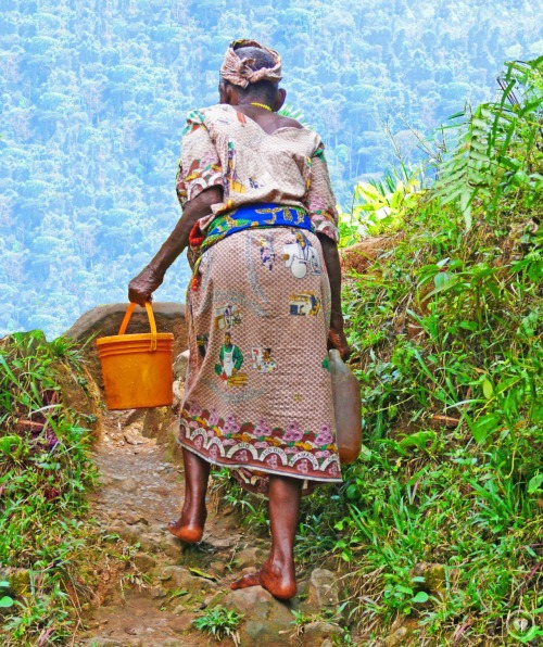 Villagers lose 167,000 hours (per year) fetching water for drinking, cleaning, and cooking in Ekanjoh Bajoh. You can help villagers regain these hours to benefit their economy, education, and health. Learn how you can change these numbers at www.thewatercollective.org