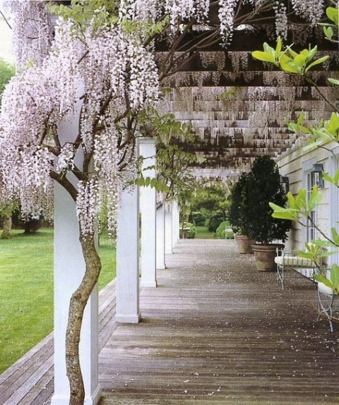 bjornsrandoms:  {I love the gardens in legendary Vogue editor Anna Wintour's Long Island home by landscape design MIRANDA BROOKS- }