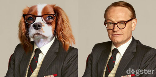 deathandtaxesmag:   If the characters from Mad Men were dogs.