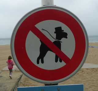 dogsintophats:  No Dogs in Top Hats Allowed? Haters gonna hate!  From http://tripified.ca/2011/09/tipsytrainingforthedrunkenmarathon.html