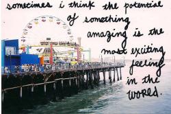 film text ocean Ferris Wheel sharpie Theme Park Pier Santa Monica Pier santa monica santa monica beach board walk