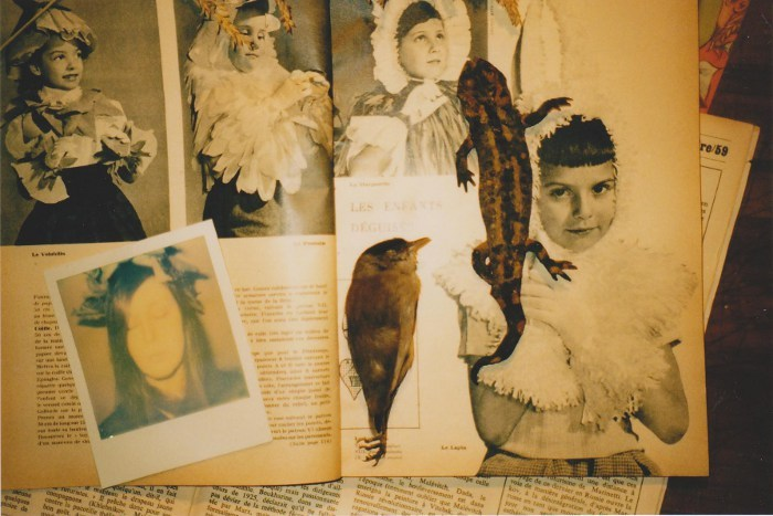 Odor of Dust & yellowed Paper…  (stuffed salamander and bird,vintage magazines *Les Enfants déguisés*)