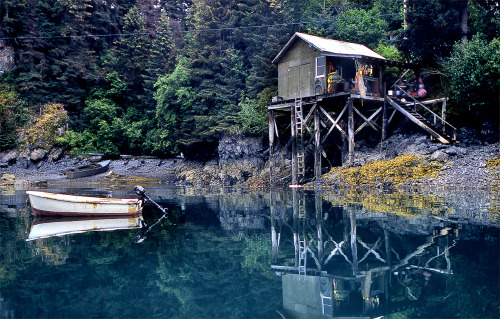 cabinporn:  Piered cabin on the Kenai Peninsula, Alaska. Photograph by Eric Rolph.