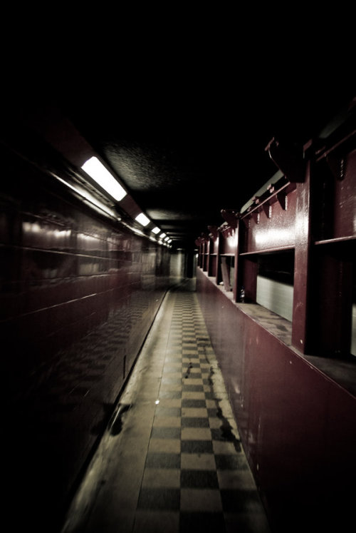 ominousplaces:  An ominous tunnel. By angelwellz.