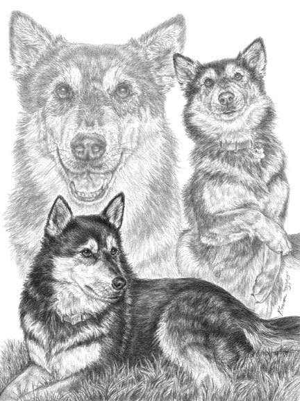 Here's this week's featured pencil artist, Kelli Swan!