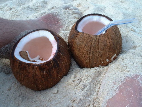 mango-passion-fruit:  tequila-breeze:  ☼ tropical blog! following back until i reach my first hundred! ☼   (via imgTumble)