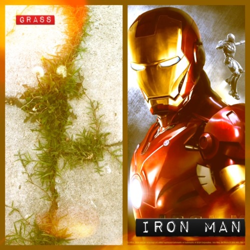 ~ Wild Grass & Iron Man ~ If GRASS can shove thru the knacks and the cracks Curdled in grey cement, Then why can't YOU break through the bulletproof glass, Baracading walls like you're Iron Man? Don't stop at the ceiling Don't stop when they say Keep pushing, and pushing and PUSHING your way! This poem is done, But one last thing 2 know: (Why does everything I say come out so seemingly sexual? I could swear I don't do it on purpose……………… though. O_0 ) Pondered by Yours Truly,  CharliZero.