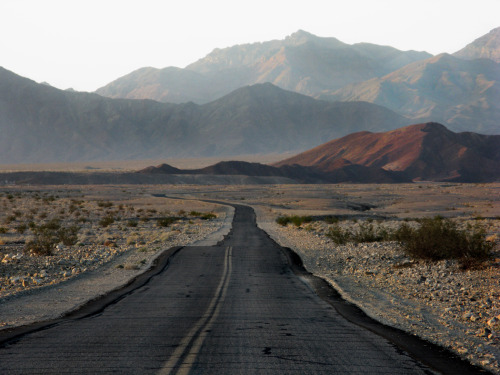 liquidnight:  Dave Glass Death Valley, California State Route 190, Inyo County, California, 2009