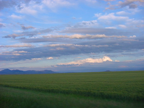 On the way to Thane Creek, Montana