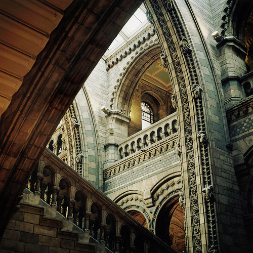 classylittlelady:  Natural History Museum by niknkimnollie this is gorgeous.