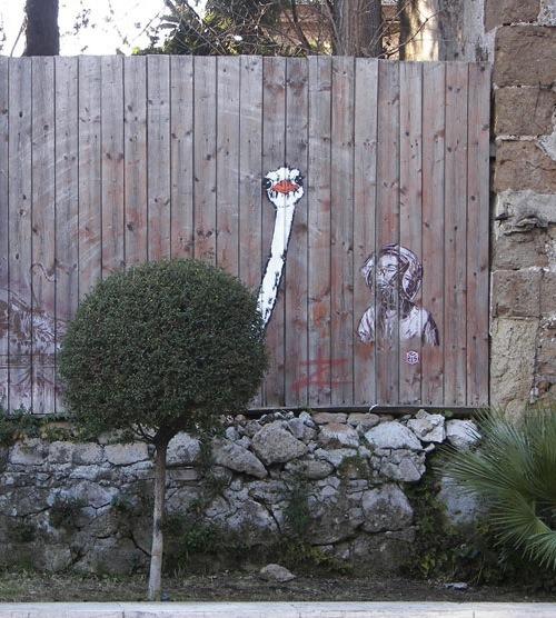 Struzzo by Pao di: Valerio Innamorati, Marco Bonanni, Margot Dallati