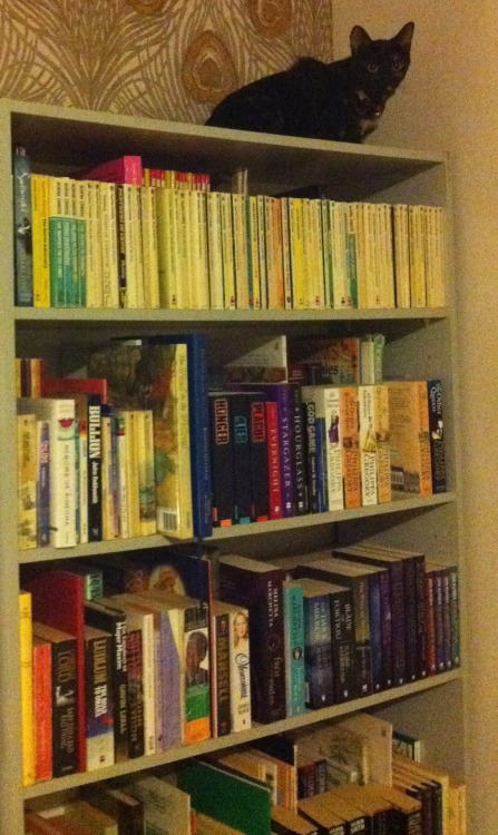 The one semi-decent photo I have of one of my bookshelves. I'll post better ones once I set the other one up properly again (makes sense if you've heard my stupid rat story >:[)