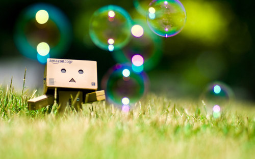 danbo is galauing