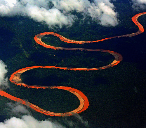 definitelydope:  Amazonia from the sky (by Zé Eduardo…)