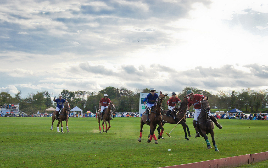 #Newport #Polo last Summer. Fun times!
