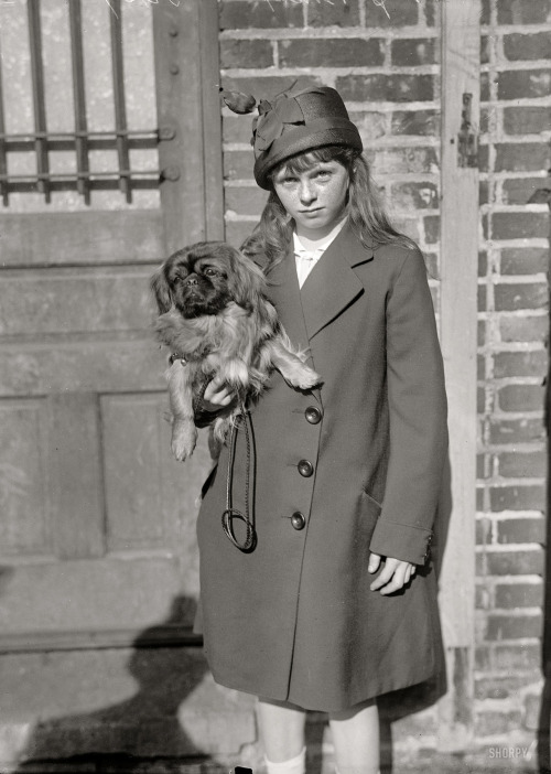 "lostsplendor:  ""Dog Show, 1915. Mrs. Blanche Strebeigh Bonaparte."" Dog owner Mrs. B. (this girl's mother) was married to Jerome Bonaparte, great-grandnephew of Napoleon. (via Shorpy Historical Photo Archive)"