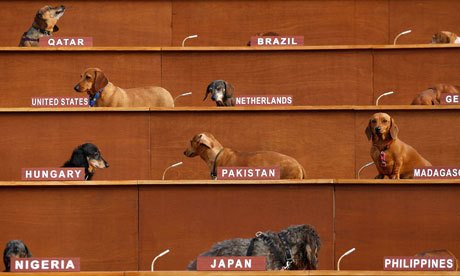 Photograph: Lucas Dawson/Getty Images The UN's gone to the dogs A to-scale recreation of the UN general assembly populated by 57 dachshunds at the Fierce Festival, Birmingham, UK - part of our guide to alternative Easter trips.