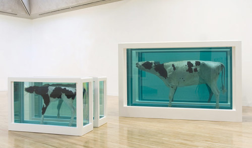 "I recently saw two really nice Damien Hirst documentaries on Channel 4, both were very insightful and gave an in depth look at his life and work. If you live in the UK I highly recommend watching them, they are both fascinating. They aired because today (4th of April 2012) is the opening of ""Damien Hirst Retrospective"" at Tate Modern, which looks at his entire body of work over the span of more than 20 years. Featuring around 70 pieces of work it really shows the growth and development of one of todays most influential artists. The exhibition runs from 4 April – 9 September 2012"
