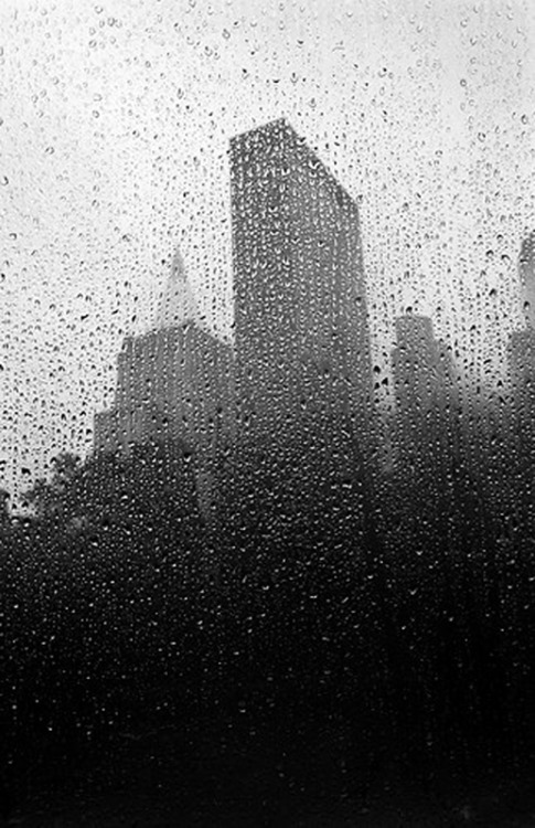 "Pierre Belhassen -  Rain  ""Wake-up in New York"""