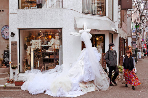 Giant Rabbit in a Wedding Dress, Harajuku by tokyofashion on Flickr.