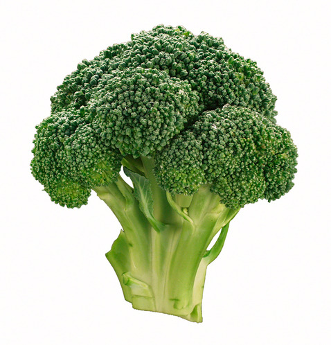 what a lovely picture of broccoli