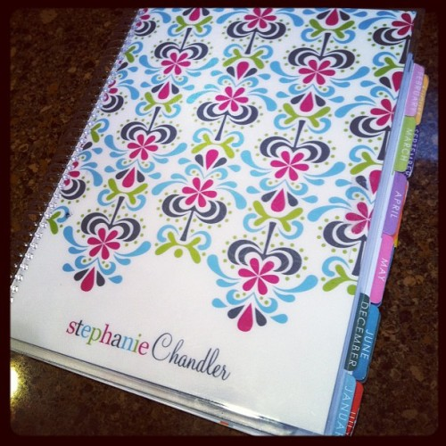 Catching up… Day 2 of #photoadayapril #Colour <3 my @ErinCondren planner (Taken with instagram)