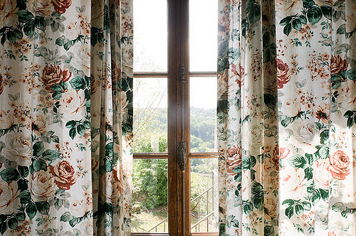 mildredmildred:  2534 (by pedro antonio pérez)