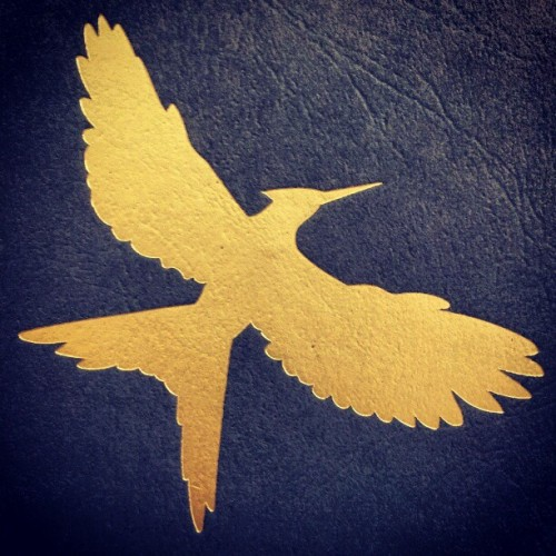 #Mockingjay #emotions #book #thg #love  (Taken with instagram)