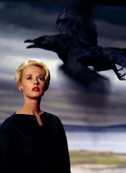 oldhollywood:  Tippi Hedren in publicity still for The Birds (1963, dir. Alfred Hitchcock) Photo by Philippe Halsman. (via)