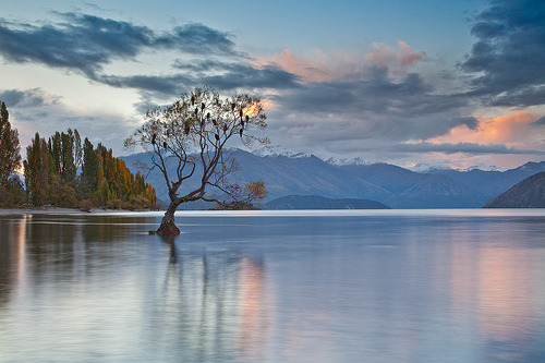 Lake Wanaka (by Brads5)