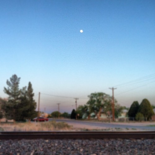 #Lennon #walk #littleLA #moon (Taken with instagram)