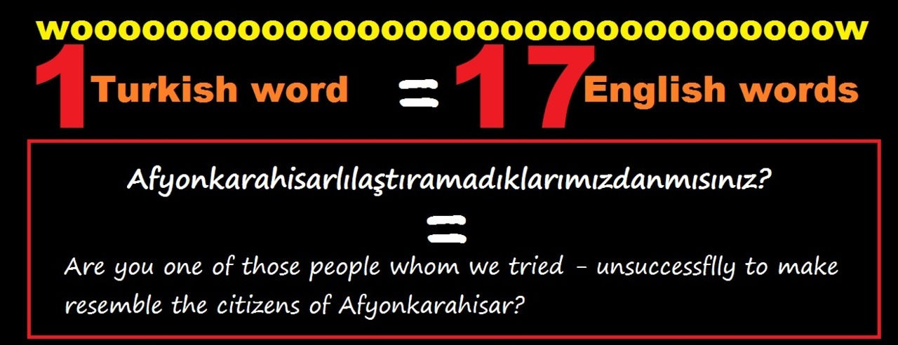 1 Turkish word = 17 English words