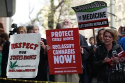 "Oaksterdam Raid: Marijuana Advocates Vow to Reopen ""Princeton of Pot"" 