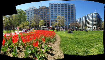 Tulips and food trucks and movement and life. A beautiful afternoon on Farragut Square. #DC