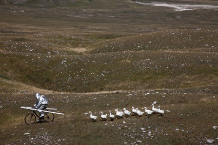 "The Moon Goose Analogue: Lunar Migration Bird Facility ""The surrogate mother had to spend the weeks following the hatching in close contact with the eleven geese. The astronaut training started almost immediately, the young birds were encouraged to walk in a V-shape —the formation used to tow Godwin's chariot— taken on expeditions into the mountains for high altitude training, taught how to use morse code devices for improved interspecies communication, and given lectures about astronomy and navigation."""