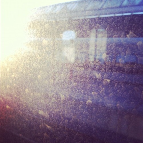 Beautiful dirt. (Taken with Instagram at Göteborg Centralstation)