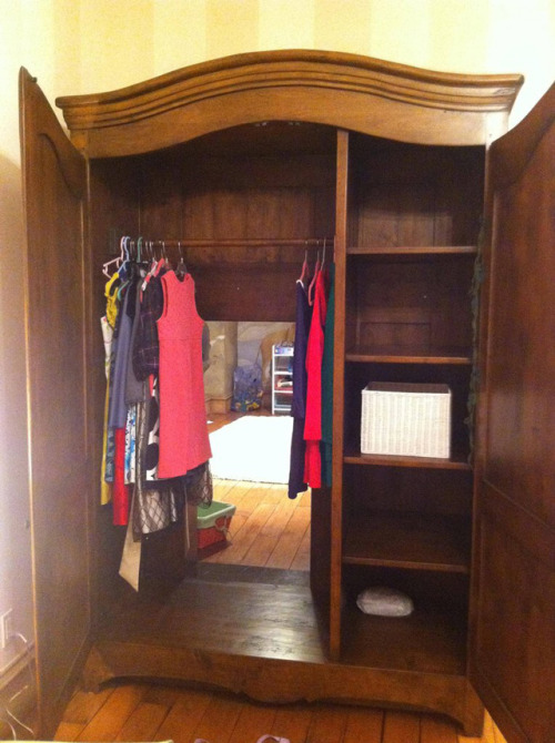 Secret door in wardrobe leads to hidden Narnia themed playroom