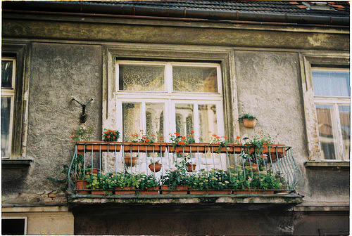 tempus-n0cem:  balcony (by blue vespertine)